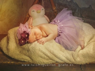 foto de bebe newborn con tutu
