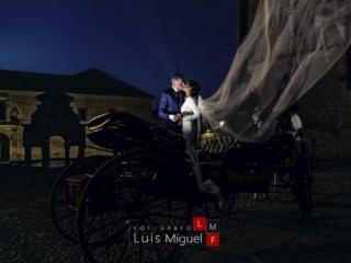 Novios besándose en el coche de caballos de su boda en la catedral de Baeza
